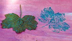 Bladeren Stempelen