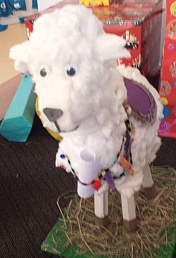 alpaca surprise