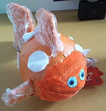 Nemo moet gevonden worden