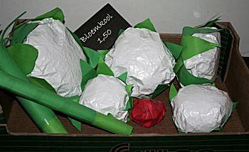 Bloemkool